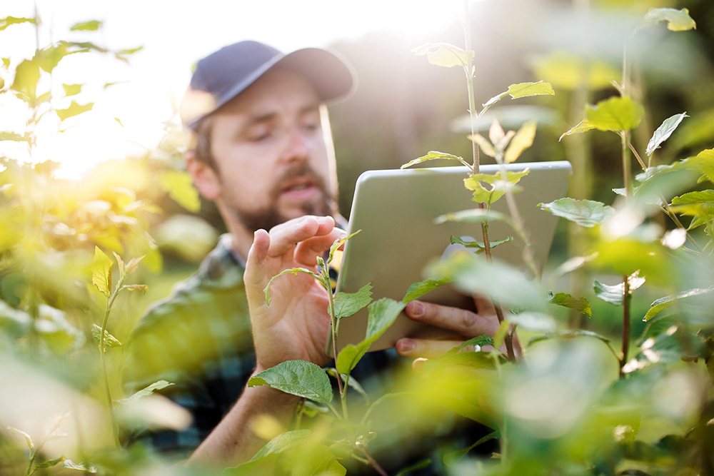Laava Smart Fingerprints®, Customer Support
